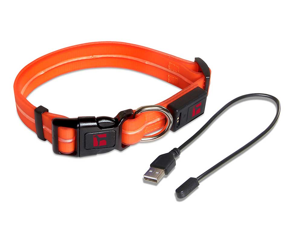 Ultrahund's Boss LED Leash