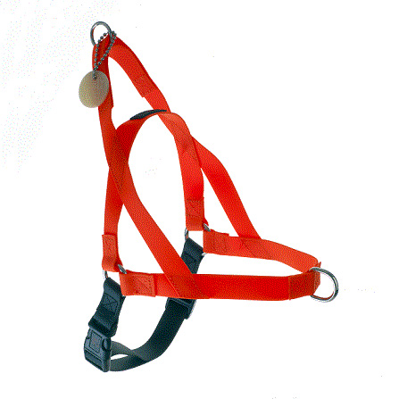 "Freedom Harness Orange, 3/4"" Wide, Medium"