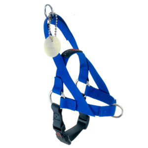 "Freedom Harness Blue, 5/8"" Wide, Small"