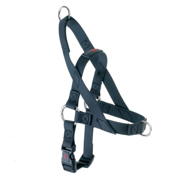"Freedom Harness Black, 5/8"" Wide, Extra Small"