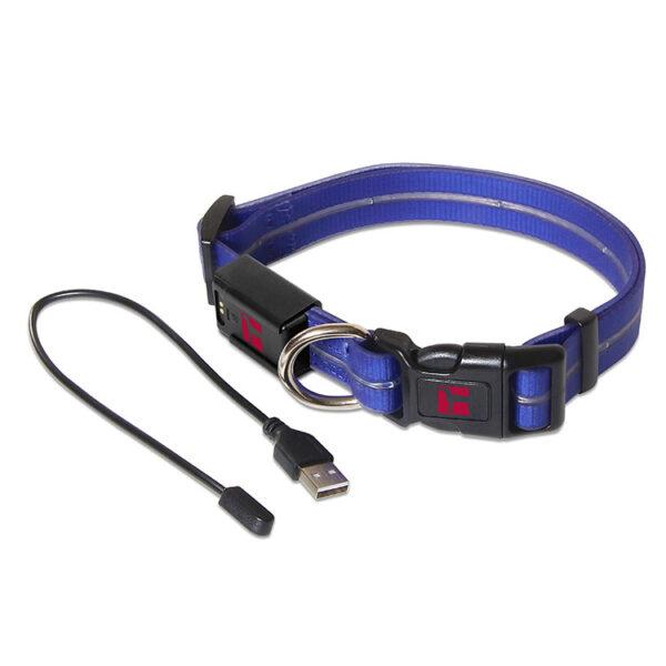 LED Adjustable Collar Large Blue
