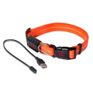 LED Adjustable Collar Large Orange