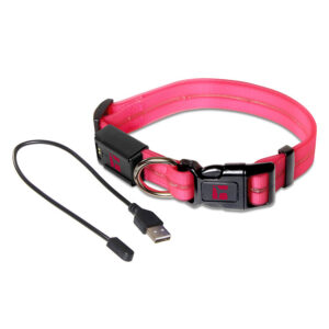 LED Adjustable Collar Large Pink
