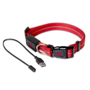LED Adjustable Collar Large Red