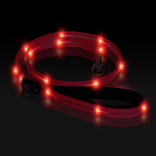 Boss LED Lead 4 foot Pink, Night