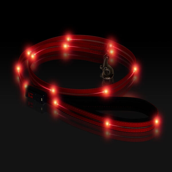Boss LED Lead 6 foot Red, Night