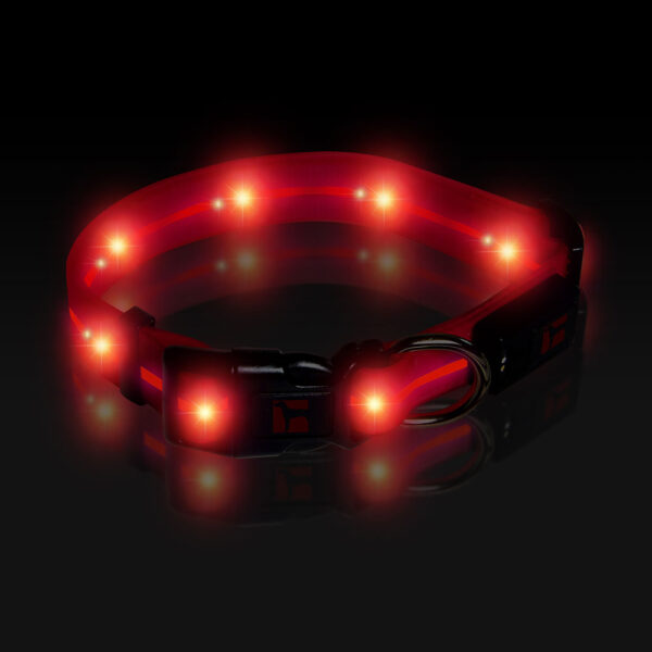 LED Adjustable Collar Large Pink, Night